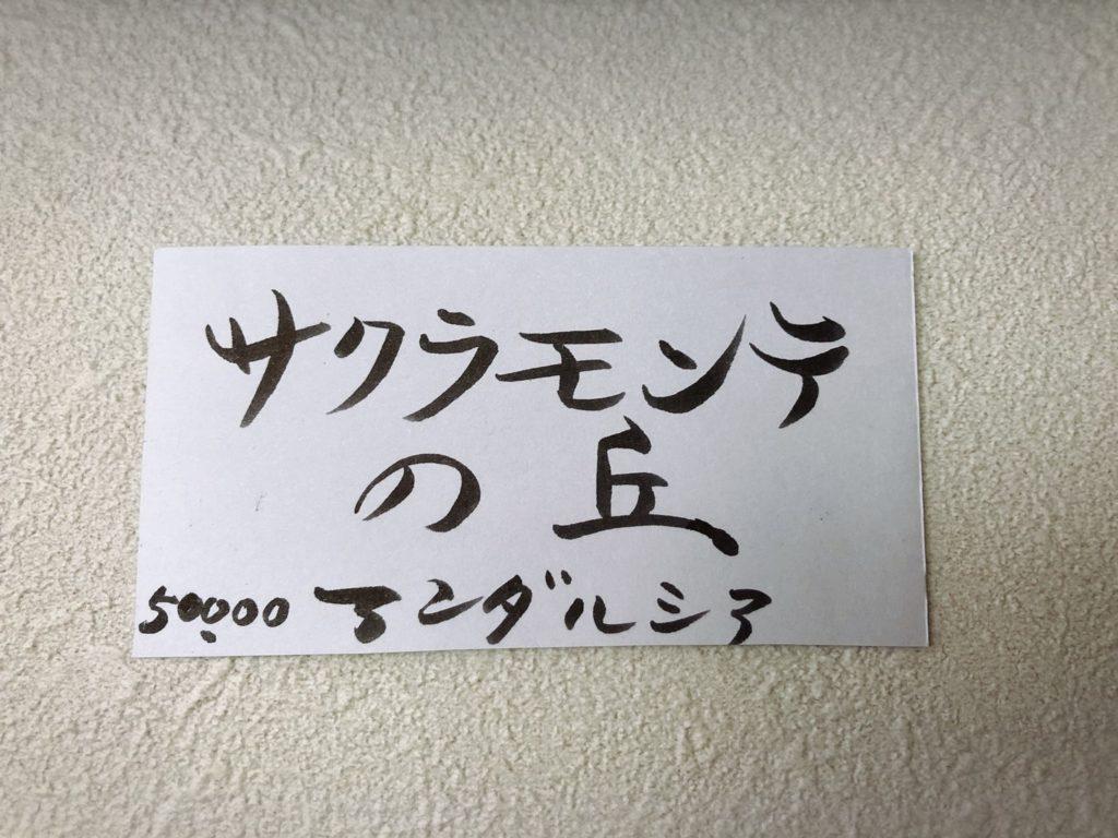 鈴木康雄 サクラモンテの丘 絵画